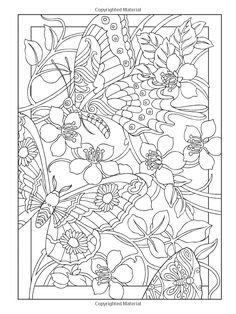 Creative Haven Incredible Insect Designs Coloring Book (Creative Haven Coloring Books): Marty Noble, Creative Haven: 9780486494999: Amazon.c...