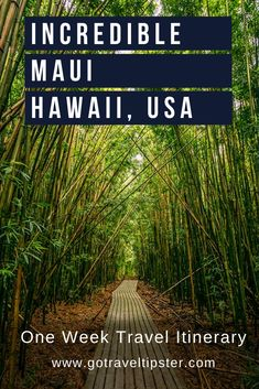 Things to do in Maui including watching the sunrise over the the best on Maui and where to find the bamboo forest. Includes helpful travel tips including how to book a camping ground on the road to hana, how book the Hawaii Travel, Hawaii Usa, Maui Vacation, Hawaii Life, Arizona Travel, Maui Hawaii, Italy Vacation, Beach Travel, Cool Places To Visit