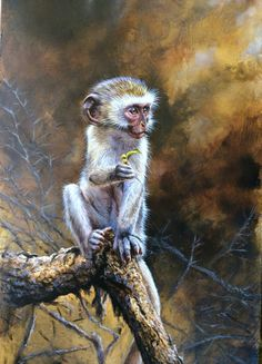 A gallery of fine art oil ,watercolour paintings of wildlife,birds & portrait works . Primates, Mammals, Wildlife Art, Art Oil, Sloth, Reptiles, Watercolor Paintings, Monkey, Turtle