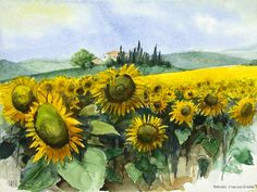 Yellow Theme, Art Photography, Painting Flowers, Sunflowers, Art Ideas, Paintings, Woman Art, Drawings, Frames