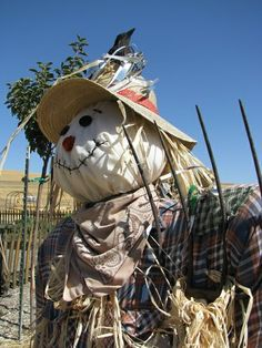 by Linda Cottin. Scarecrows ...