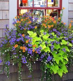 Awesome window box planter