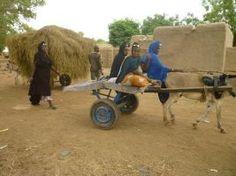 La lucha contra la desnutrición infantil en la región de Ségou, Malí