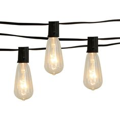 Hudson 43 Candle u0026 Light Collection St40 Clear Edison Bulb String Lights  sc 1 st  Pinterest & The first Incandescent Light Bulb was invented by Thomas Edison in ...