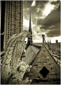 grotesques and gargoyles | Amazing-Photos-of-Gargoyles-and-Grotesques-6
