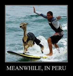 Meanwhile, in Peru