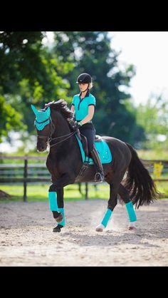 ☪Pinterest → FrenchFanGirl ☼ horse tack