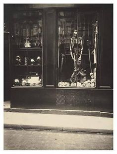 Art Print: Zoologist's Shop by Eugene Atget : 42x32in