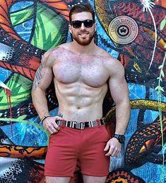 Hairy Men, Bearded Men, Shirtless Hunks, Ginger Men, Hot Hunks, Hairy Chest, Muscular Men, Attractive Men, Male Beauty