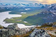 Finland´s nature photograph of the year was a picture taken by Juha-Pekka Paananen of a game bird perched over a scenic vista in Lapland. Lappland, Finland Summer, Lapland Finland, Summer Landscape, Nature Pictures, Landscape Pictures, Mother Nature, Mother Earth, Wonders Of The World