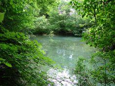 Lambourn River, Lambourn