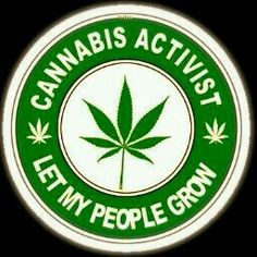 Legalize marijuana, but don't let big business and government take over growing it! People should be able to grow marijuana, just like having a vegetable garden. A great ebook that has interesting recipes for Dragon mints and Cannabis chocolates: MARIJUANA - Guide to Buying, Growing, Harvesting, and Making Medical Marijuana Oil and Delicious Candies to Treat Pain and Ailments by Mary Bendis, Second Edition. Only 2.99. www.muzzymemo.com