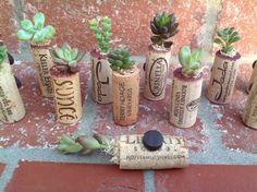 Sale Succulent Cork Magnets Great wedding by WindmillFloralDesign, $13.00
