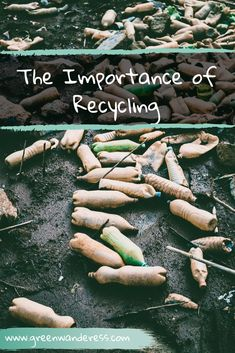 Why Recycling Is Very Important - Green Wanderess Reduce Reuse, Reduce Waste, Reuse Recycle, Zero Waste, Recycling Center, Recycling Ideas, Importance Of Recycling, Aluminum Uses, Types Of Plastics