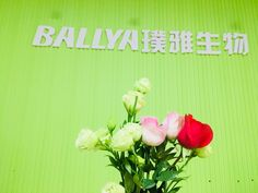 Ballya bio was founded in 2007 based on a small private laboratory, and focuses on the biological and medical field with full advanced technologies to research & develop, manufacture and market new & improved products. Medical Field, Food Safety, New Market, Dairy, Kit, Products, Food Security, Beauty Products
