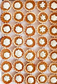 Mini Pumpkin Pies are the perfect bite-sized treat for Thanksgiving or any day! These more natural pumpkin pies are made without evaporated milk. Mini pumpkin pie tarts would be so cute for a classroom Thanksgiving feast. Mini Pumpkin Pies, Pumpkin Pie Recipes, Mini Pumpkins, Pumpkin Spice, Mini Pies, Pumpkin Tarts, Canned Pumpkin, Thanksgiving Recipes, Fall Recipes