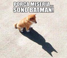 13052 Sono Batman