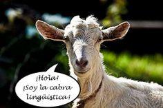 ¿En qué se parecen una cabra y un fonema? Aquí está la verdad: http://www.profedeletras.es/2013/11/describir-fonemas-y-sonidos-i-el-haz-de.html