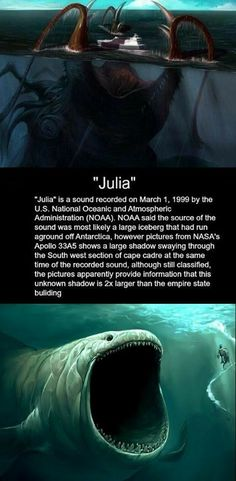 It is true! It sounds like a lion or something roaring underwater from a long ways away. Creepy Facts, Wtf Fun Facts, Bizarre Facts, Creepy Things, Random Facts, Random Stuff, Creepy Stories, Ghost Stories, Horror Stories