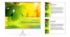Download 40+ Free COLORFUL PowerPoint Templates | Ginva