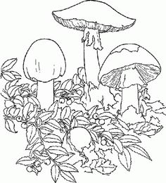 find this pin and more on my personal adult ish coloring book cartoon mushroom coloring pages