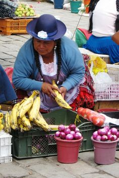 The best organic vegetables and fruits only in Ecuador