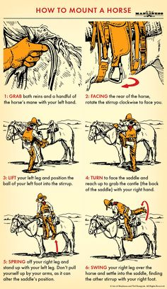 How to Mount a Horse | The Art of Manliness