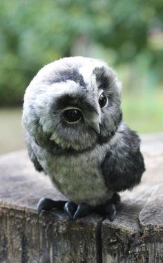 Owl Toy   Игрушечная сова Кнопка