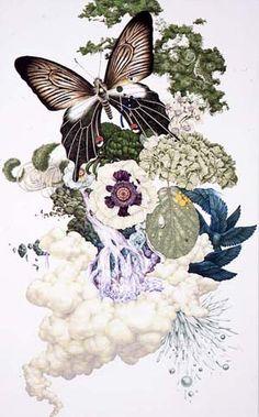 blAcK butterfly by Kozue Oshima