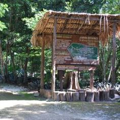 Puerto Morelos Botanical Gardens-Yaax Che Botanical Gardens