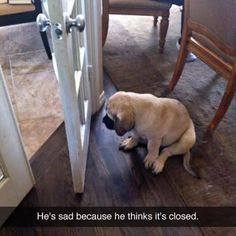 he is sad, 'cause he thinks it's closed.....