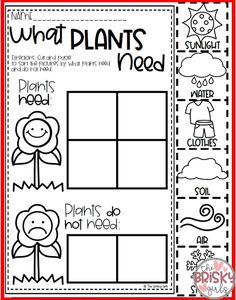 Plant Life Cycle, Needs of a Plant, Parts of a Plant, Plant Life Cycle Activitie… – Modern Design - Modern Homeschool Kindergarten, Preschool Lessons, Preschool Crafts, Homeschooling, Parts Of A Flower, Parts Of A Plant, Plant Lessons, First Grade Science, Science Week