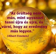 Einstein, Coaching, Van, Fruit, Life, Food, Training, Essen, Meals