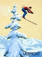 Vermont  Ski Skiing Race Sport 16x22 Vintage Poster FREE S/H