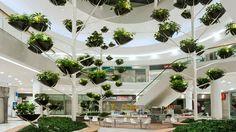 Vegetal design: trend analysis SCS Vienna by Alexis Tricoire Indoor Planters, Indoor Garden, Futuristic Architecture, Landscape Architecture, Shopping Mall Interior, Shopping Malls, Atrium Design, Green Facade, Vertical Garden Design