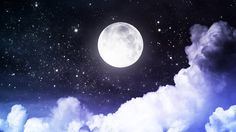 Moonlit night and stars are bright