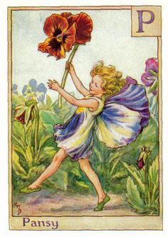 flower fairy PANSY FAIRY  Original 1930s print by Barker