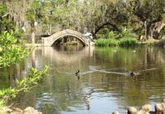 city park new orleans - Bing Images
