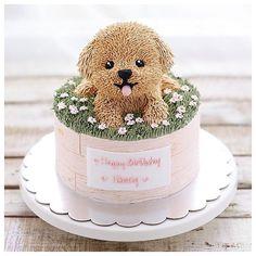 Fondant Flower Cake, Fondant Cakes, Cupcake Cakes, Fondant Bow, Fondant Figures, Buttercream Cake, Puppy Birthday Cakes, Birthday Cake Girls, Dog Cakes