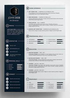 Professional CV for fresher Curriculum vitae resume Resume for Civil ...