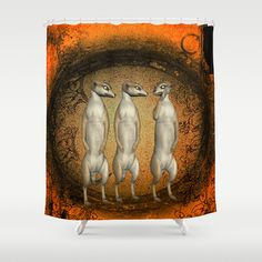 Funny meerkats Shower Curtain by Curtains, Shower, Music, Funny, Party, Painting, Rain Shower Heads, Musica, Musik