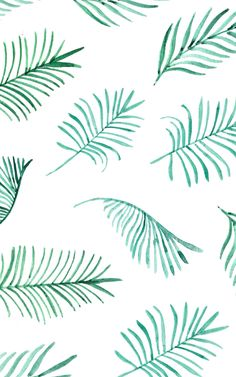 Palm leaves | Design Love Fest, January 2015