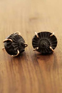 Limited edition Ammonite blank post earring. These are so amazing!