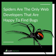 Spiders Are The Only Web Developers That Are Happy To Find Bugs.
