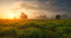 Июньский рассвет. Утро туманное, утро прекрасное Author: Алексей Угальников