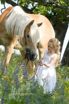 858 Best Photo S Horses Amp Kids Images On Pinterest In