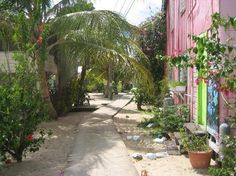 Placencia, Belize ...I have walked this path!