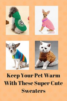 Cute winter sweaters for your pets, here you will find winter wear for dogs thunder vest for dogs winter care for dogs winter boots for dogs winter hats for dogs apparel for dogs apparel for small dogswaterproof shoes for dogs waterproof winter coat for dogs warm winter coats large dogs and much more.