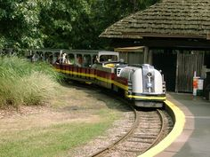 Detroit Zoo train 1