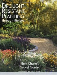 Drought Resistant Planting: Gardenista